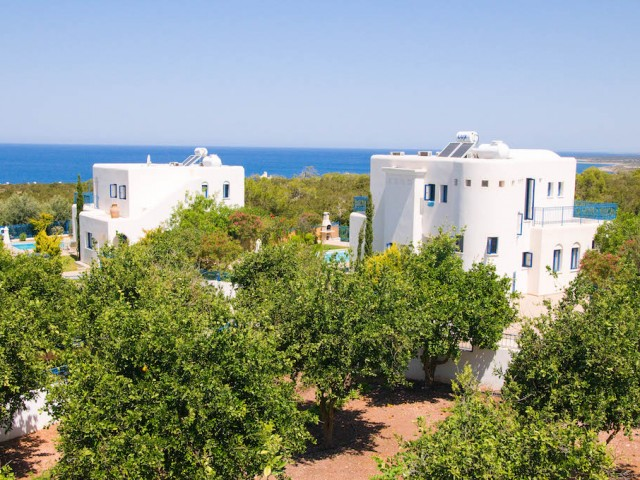 Аренда виллы с 3-мя спальнями Peyia, Пафос